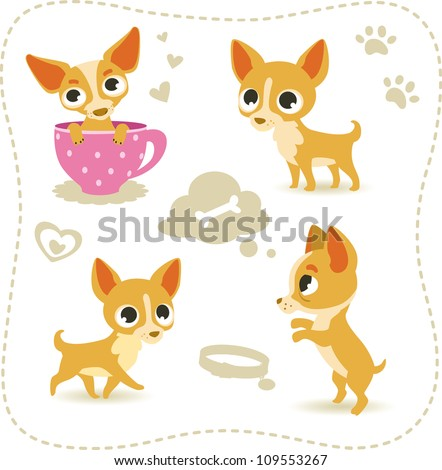 Set of little chihuahua.