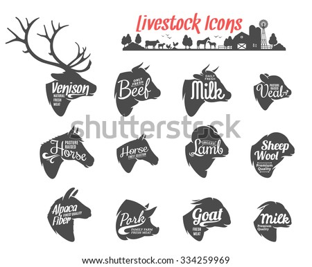 Set of livestock labels templates. Livestock icons collection for groceries, meat stores, packaging and advertising. Vector label design. - stock vector