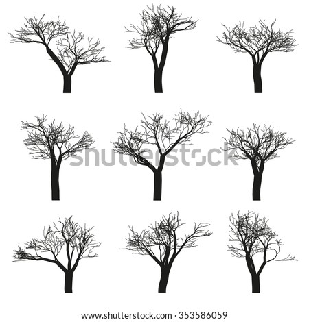 Set of nine deciduous trees with no leaves on a white background. Vector, isolated objects - stock vector