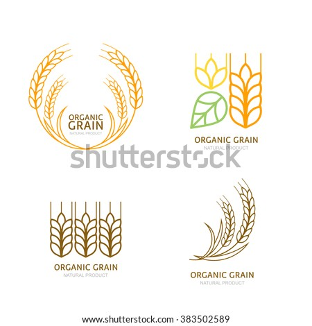 Set of organic wheat grain outline icons. Vector logo design elements. Cereals linear illustration. Concept for organic products label, harvest and farming, grain, bakery, healthy food. - stock vector