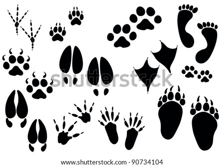 Set of paw print - stock vector