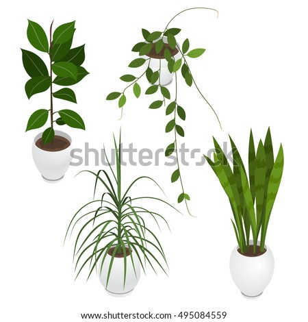 set of potted indoor office and house plants collection of 3d flower pots with