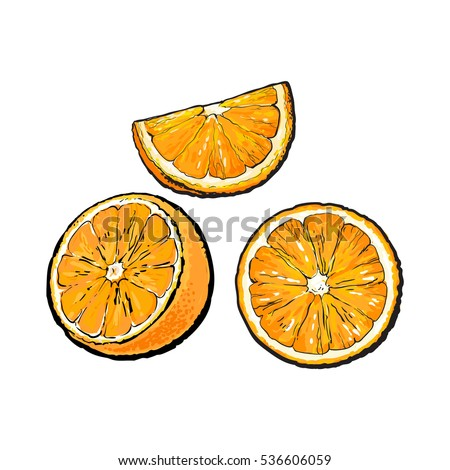Set of realistic colorful hand drawn half, slice and segment of ripe, juicy orange, sketch vector illustration isolated on white background. Hand drawing of orange cut in half, sliced and segmented
