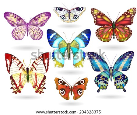 Set of realistic colorful  vector butterflies. EPS 10 - stock vector