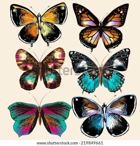 Set of realistic vector butterflies for design  - stock vector