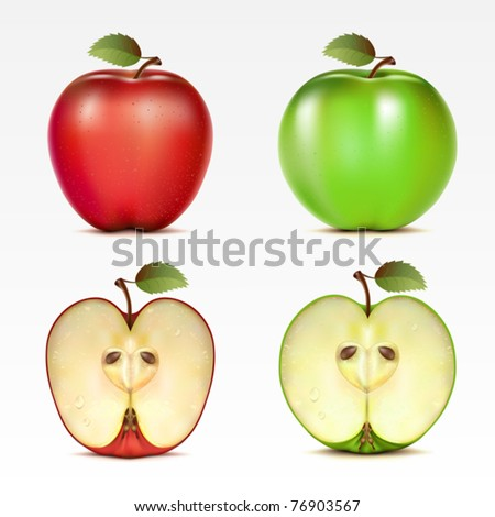 Set of red and green apples and their halves - stock vector