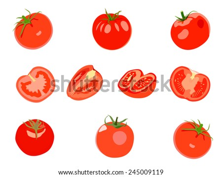 Set of red Tomatos. Vector illustration. Isolated on white background - stock vector