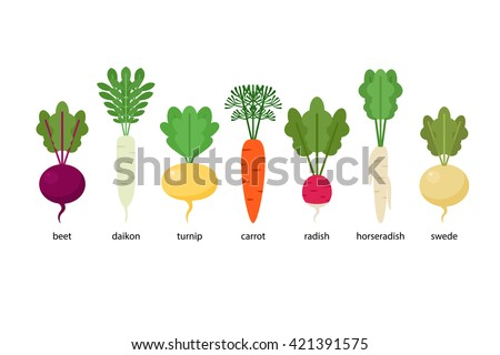 how to cook carrot and swede