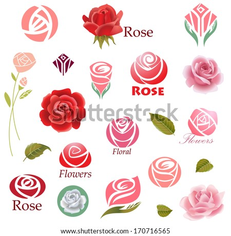 Set of rose flower design elements