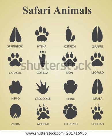 Set of safari animal tracks  - stock vector