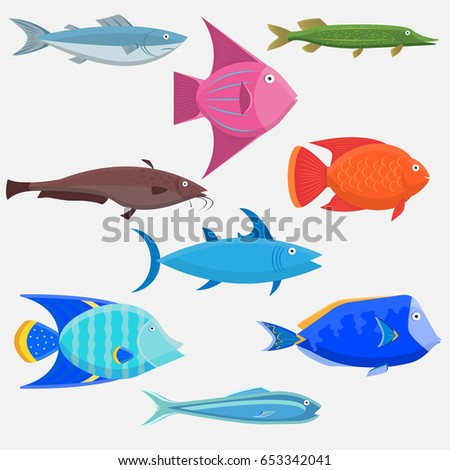 different types of fish. set of sea and river fishes. different types fish vector illustration flat