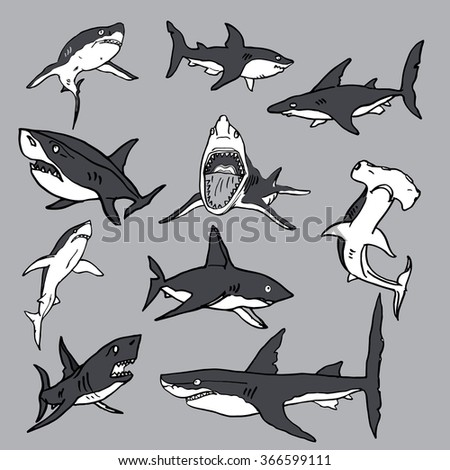 Set of sea sharks, EPS vector for T-shirts and Logo design. - stock vector