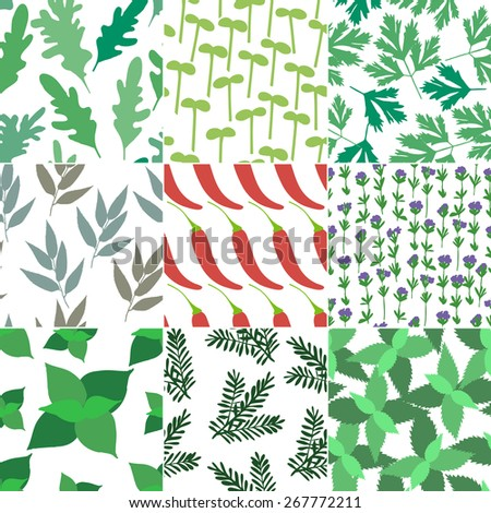 Set of 9 seamless hand drawn patterns with different aromatic herbs and spices. Concept for packing design. - stock vector