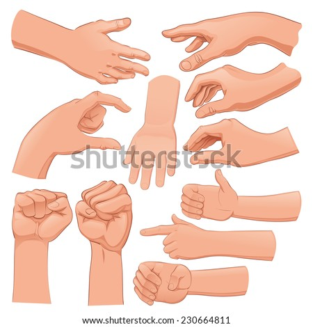 Set of several hands. Cartoon and vector isolated objects  - stock vector