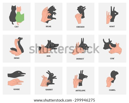 Set of shadows of the animals on a white background. Halloween - stock vector