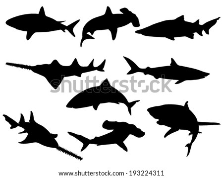 Set of Shark Silhouettes. Vector Images - stock vector