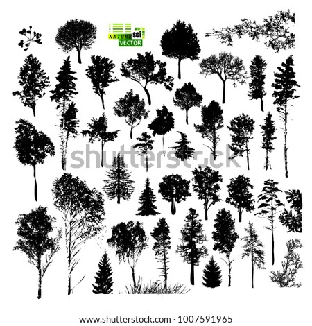 set of silhouette trees. Vector