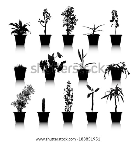 Set of silhouettes house plants in pots - stock vector