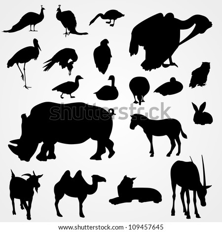 set of silhouettes of animals on zoo - stock vector