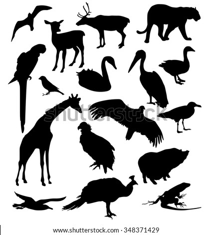 Set of silhouettes of birds and animals. Vector illustration - stock vector