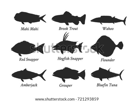Set of silhouettes of edible kinds of fish.