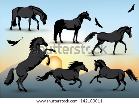 Set of silhouettes of standing, running and galloping horses and birds with a sunset background - stock vector