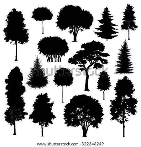 Set of silhouettes of trees isolated on white. Vector illustration - stock vector