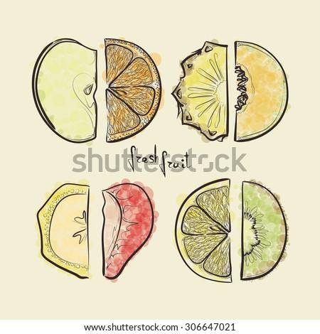 set of sketched fruit slices, design elements - stock vector