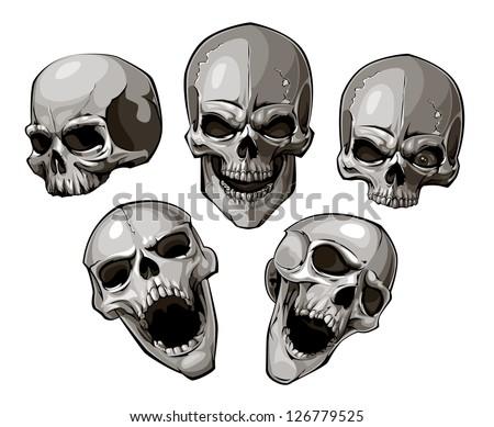 Set of skulls. Vector illustration. - stock vector