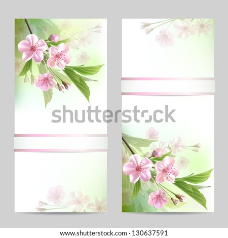 Set of spring banners with blossoming tree branch with pink flowers. Vector illustration - stock vector