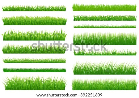 Set of spring green grass horizontal borders. Green grass collection on white background for Your design. Design elements for natural landscape with grass. Various types of green grass. Vector  - stock vector