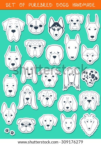 Set of 24 stickers different breeds dogs, handmade. Head dog. Icons with dogs. Sketch animals. Doodle Dog. Set of isolated dogs for design. Dogs handmade. Alabai and Mastiff. Bulldog and pug. Pitbull - stock vector