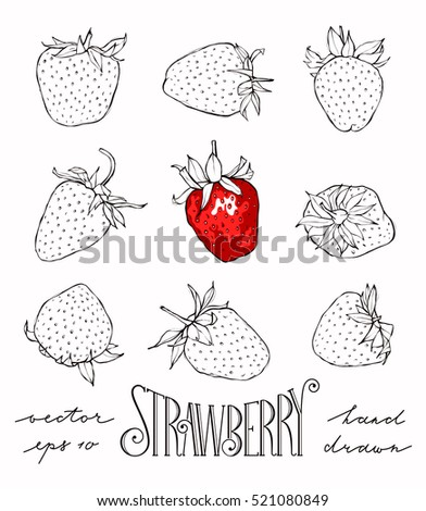 Set of strawberries isolated on white background. Hand drawn vector illustration. EPS 10