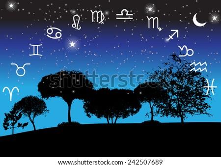 Set of Symbol Zodiac Sign. Vector Illustration. EPS10 - stock vector