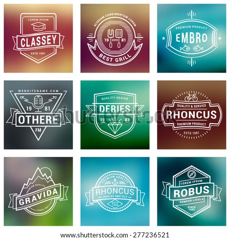 Set of Thin Line Labels, Logotypes, Badges for Your Business - stock vector