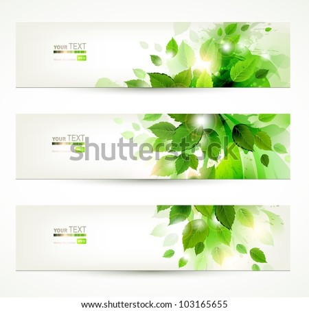 set of three banners with fresh green leaves - stock vector