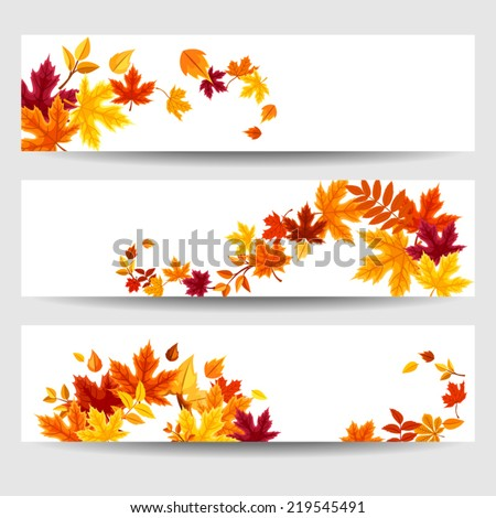 Set of three vector banners with colorful autumn leaves. - stock vector