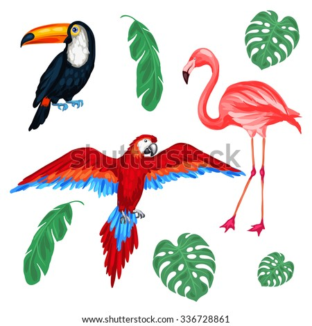 Set of tropical birds and palm leaves. - stock vector