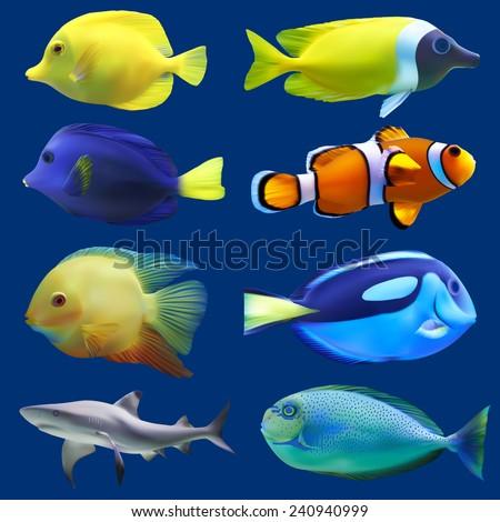 Set of tropical fish. Vector illustration - stock vector