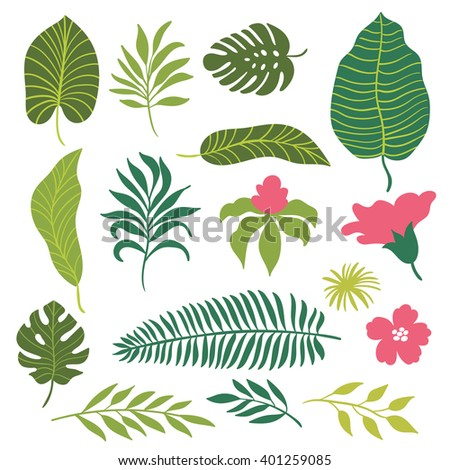 set of tropical leaves    - stock vector
