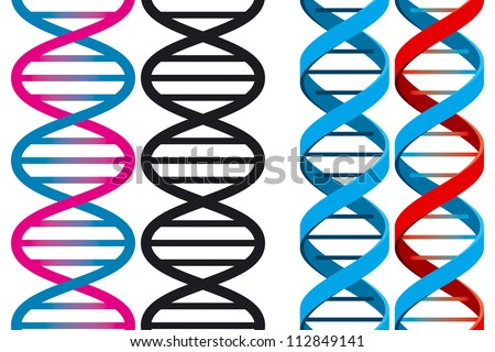 Set of Two Seamless DNA Symbols on White Background. Vector Illustration - stock vector
