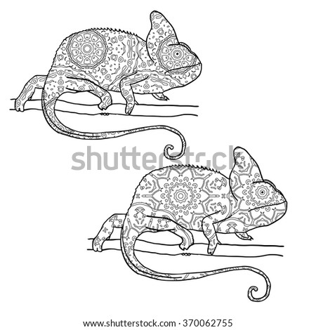 Set of two vector illustratons of chamaleon with hand drawn pattern. Reptile isolated on white. Zentangle style illustration. Illustration for adult coloring - stock vector
