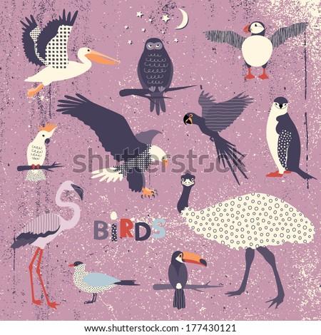 Set of various birds - stock vector
