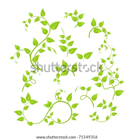 Set of various green plants, young saplings. Vector illustration, isolated on a white. - stock vector