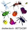 Set of various insects. Butterflies, bug, dragonfly, ant, spider,  ladybird. - stock vector