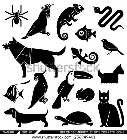 Set of various pet icons. Dog, cat, hamster, parrot, canary, spider, lizard, chameleon, tortoise, snake, aquarium fish. Can be incorporated in logo due to their geometrical style.   - stock vector