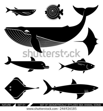 Set of various sea animal icons: whale, tuna, dolphin, shark, fish, rajiforme. Vector illustration.