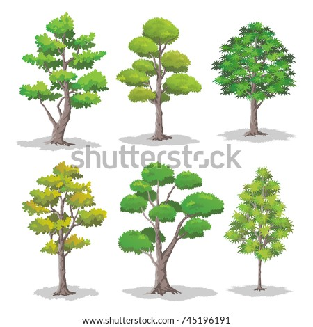 Set of Various Shapes of Trees.Forest Element Vector Illustration