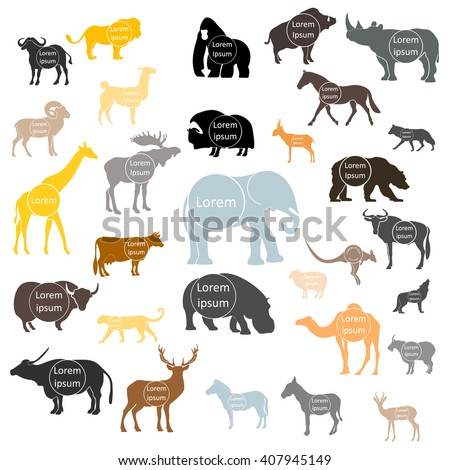 set of vector animals logo with space for text