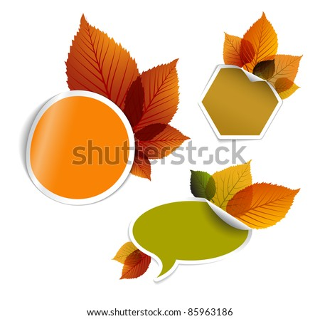 Set of vector autumn discount tickets, labels, stamps, stickers with colorful leafs - stock vector